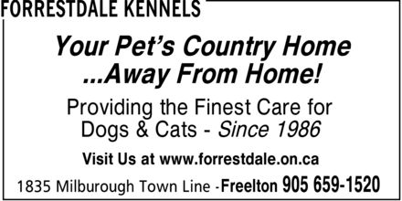 Forrestdale Kennels (905-659-1520) - Display Ad - Your Pet¿s Country Home ...Away From Home! Providing the Finest Care for Dogs & Cats Since 1986 Visit Us at www.forrestdale.on.ca Your Pet¿s Country Home ...Away From Home! Providing the Finest Care for Dogs & Cats Since 1986 Visit Us at www.forrestdale.on.ca Your Pet¿s Country Home ...Away From Home! Providing the Finest Care for Dogs & Cats Since 1986 Visit Us at www.forrestdale.on.ca