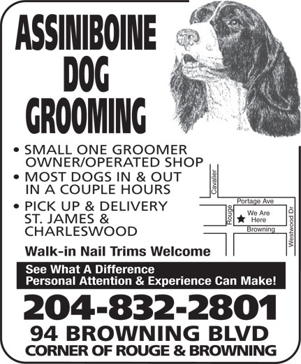 Assiniboine Dog Grooming (204-832-2801) - Annonce illustrée======= - ST. JAMES & ASSINIBOINE DOG GROOMING SMALL ONE GROOMER OWNER/OPERATED SHOP MOST DOGS IN & OUT IN A COUPLE HOURS Cavalier Portage Ave Portage Ave PICK UP & DELIVERY We Are Here Rouge Browning CHARLESWOOD Westwood Dr Browning Walk-in Nail Trims Welcome See What A Difference Personal Attention & Experience Can Make! 204-832-2801 94 BROWNING BLVD CORNER OF ROUGE & BROWNING ST. JAMES & ASSINIBOINE DOG GROOMING SMALL ONE GROOMER OWNER/OPERATED SHOP MOST DOGS IN & OUT IN A COUPLE HOURS Cavalier Portage Ave Portage Ave PICK UP & DELIVERY We Are Here Rouge Browning CHARLESWOOD Westwood Dr Browning Walk-in Nail Trims Welcome See What A Difference Personal Attention & Experience Can Make! 204-832-2801 94 BROWNING BLVD CORNER OF ROUGE & BROWNING