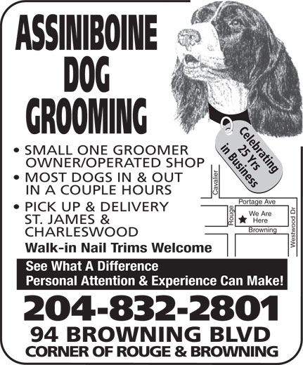 Assiniboine Dog Grooming (204-832-2801) - Display Ad - SMALL ONE GROOMER OWNER/OPERATED SHOP MOST DOGS IN & OUT IN A COUPLE HOURS Cavalier Portage Ave Rouge PICK UP & DELIVERY We Are Here ST. JAMES & CHARLESWOOD Westwood Dr Browning Walk-in Nail Trims Welcome See What A Difference Personal Attention & Experience Can Make! 204-832-2801 94 BROWNING BLVD CORNER OF ROUGE & BROWNING ASSINIBOINE DOG Celebrating GROOMING 25 Yrsin Business SMALL ONE GROOMER OWNER/OPERATED SHOP 25 Yrsin Business MOST DOGS IN & OUT IN A COUPLE HOURS Cavalier Portage Ave Rouge PICK UP & DELIVERY We Are Here ST. JAMES & CHARLESWOOD Westwood Dr Browning Walk-in Nail Trims Welcome See What A Difference Personal Attention & Experience Can Make! 204-832-2801 94 BROWNING BLVD CORNER OF ROUGE & BROWNING ASSINIBOINE DOG Celebrating GROOMING 25 Yrsin Business SMALL ONE GROOMER OWNER/OPERATED SHOP MOST DOGS IN & OUT IN A COUPLE HOURS Cavalier Portage Ave Rouge PICK UP & DELIVERY We Are Here ST. JAMES & CHARLESWOOD Westwood Dr Browning Walk-in Nail Trims Welcome See What A Difference Personal Attention & Experience Can Make! 204-832-2801 94 BROWNING BLVD CORNER OF ROUGE & BROWNING ASSINIBOINE DOG Celebrating GROOMING 25 Yrsin Business SMALL ONE GROOMER OWNER/OPERATED SHOP MOST DOGS IN & OUT IN A COUPLE HOURS Cavalier Portage Ave Rouge PICK UP & DELIVERY We Are Here ST. JAMES & CHARLESWOOD Westwood Dr Browning Walk-in Nail Trims Welcome See What A Difference Personal Attention & Experience Can Make! 204-832-2801 94 BROWNING BLVD CORNER OF ROUGE & BROWNING ASSINIBOINE DOG Celebrating GROOMING