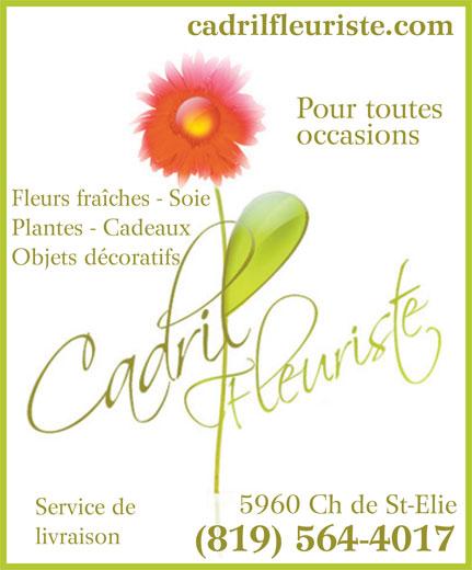 Cadril Fleuriste Enr (819-564-4017) - Annonce illustrée======= - cadrilfleuriste.com Pour toutes occasions Fleurs fraîches - Soie Plantes - Cadeaux Objets décoratifs 5960 Ch de St-Elie Service de livraison (819) 564-4017