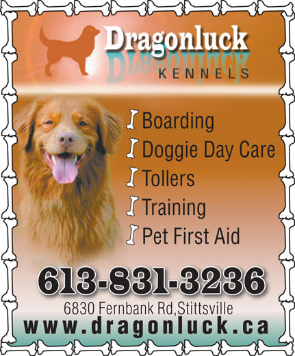 Dragonluck Kennels (613-831-3236) - Display Ad - Doggie Day Care Tollers Boarding Boarding Doggie Day Care Tollers Training Pet First Aid 613-831-3236 6830 Fernbank Rd,Stittsville6830 Fnbk Rd,Stittille www.dragonluck.ca Training Pet First Aid 613-831-3236 6830 Fernbank Rd,Stittsville6830 Fnbk Rd,Stittille www.dragonluck.ca