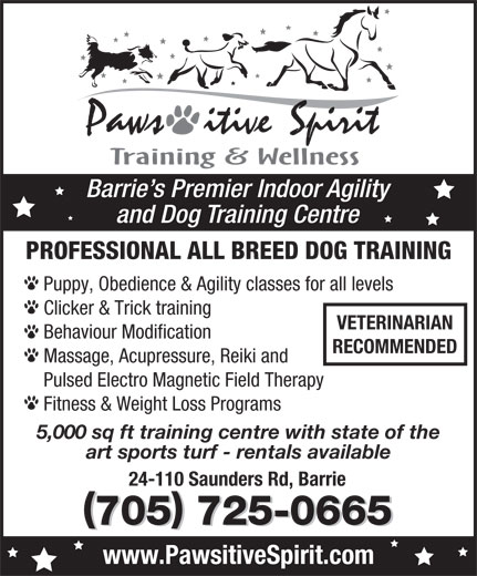 Pawsitive Spirit (705-725-0665) - Display Ad - PROFESSIONAL ALL BREED DOG TRAINING Puppy, Obedience & Agility classes for all levels Clicker & Trick training VETERINARIAN Behaviour Modification RECOMMENDED and Dog Training Centre Massage, Acupressure, Reiki and Pulsed Electro Magnetic Field Therapy Fitness & Weight Loss Programs 5,000 sq ft training centre with state of the art sports turf - rentals available 24-110 Saunders Rd, Barrie 705 725-0665 www.PawsitiveSpirit.com Barrie s Premier Indoor Agility