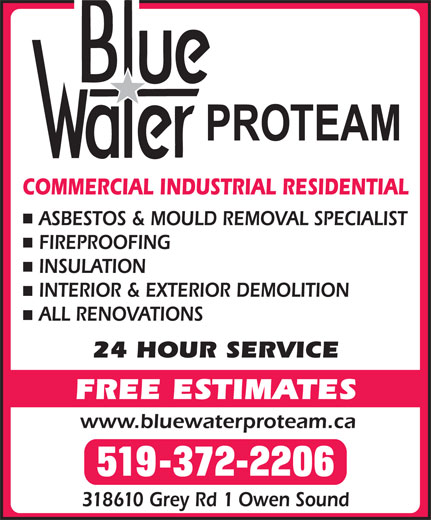 BlueWater/ProTeam (519-372-2206) - Display Ad -