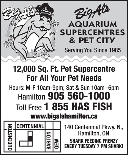 Big Al's Aquarium Supercentres & Pet City (905-560-1000) - Annonce illustrée======= - Serving You Since 1985 12,000 Sq. Ft. Pet Supercentre For All Your Pet Needs Hours: M-F 10am-9pm; Sat & Sun 10am -6pm Hamilton 905 560-1000 Toll Free 1 855 HAS FISH www.bigalshamilton.ca 140 Centennial Pkwy. N., Hamilton, ON SHARK FEEDING FRENZY EVERY TUESDAY 7 PM SHARK!  Serving You Since 1985 12,000 Sq. Ft. Pet Supercentre For All Your Pet Needs Hours: M-F 10am-9pm; Sat & Sun 10am -6pm Hamilton 905 560-1000 Toll Free 1 855 HAS FISH www.bigalshamilton.ca 140 Centennial Pkwy. N., Hamilton, ON SHARK FEEDING FRENZY EVERY TUESDAY 7 PM SHARK!  Serving You Since 1985 12,000 Sq. Ft. Pet Supercentre For All Your Pet Needs Hours: M-F 10am-9pm; Sat & Sun 10am -6pm Hamilton 905 560-1000 Toll Free 1 855 HAS FISH www.bigalshamilton.ca 140 Centennial Pkwy. N., Hamilton, ON SHARK FEEDING FRENZY EVERY TUESDAY 7 PM SHARK!