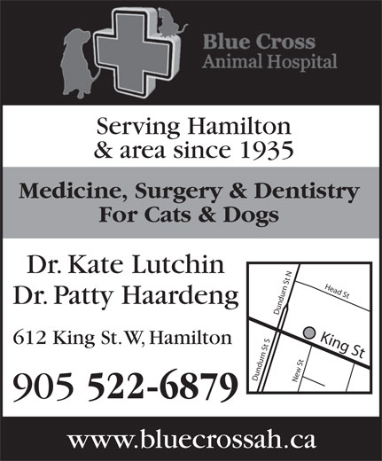 Blue Cross Animal Hospital Professional (905-522-6879) - Display Ad - Serving Hamilton & area since 1935 Medicine, Surgery & Dentistry For Cats & Dogs Dr. Kate Lutchin Dr. Patty Haardeng King St Dundurn St SDundurn St NNew St Head S 612 King St. W, Hamilton 905 522-6879 www.bluecrossah.ca
