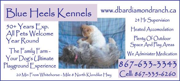 Blue Heels Kennels (867-633-3343) - Annonce illustrée======= -