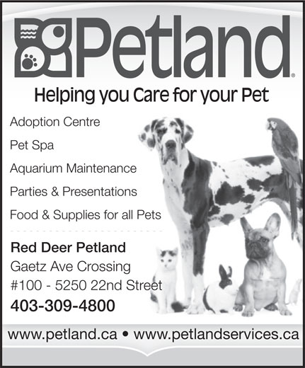 Petland (403-309-4800) - Annonce illustrée======= - Helping you Care for your Pet Adoption Centre Pet Spa Aquarium Maintenance Parties & Presentations Food & Supplies for all Pets Red Deer Petland Gaetz Ave Crossing #100 - 5250 22nd Street 403-309-4800 www.petland.ca   www.petlandservices.ca