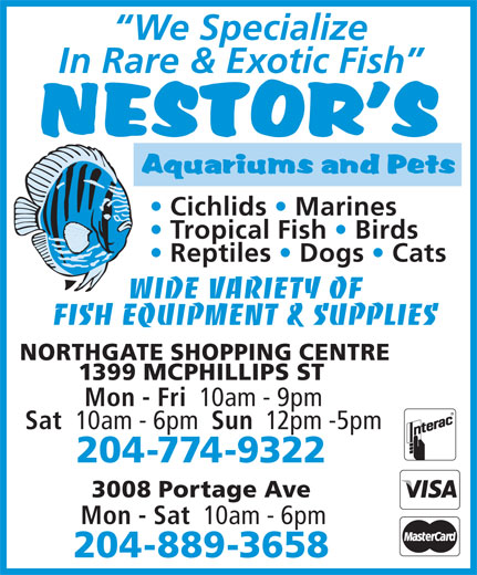 Nestor's Aquariums & Pets (204-774-9322) - Annonce illustrée======= - Sun WIDE VARIETY OF FISH EQUIPMENT & SUPPLIES NORTHGATE SHOPPING CENTRE 1399 MCPHILLIPS ST Mon - Fri 10am - 9pm Sat 10am - 6pm WIDE VARIETY OF FISH EQUIPMENT & SUPPLIES NORTHGATE SHOPPING CENTRE 1399 MCPHILLIPS ST Mon - Fri 10am - 9pm Sat 10am - 6pm Sun 12pm -5pm 204-774-9322 3008 Portage Ave Mon - Sat 10am - 6pm 204-889-3658 We Specialize In Rare & Exotic Fish Cichlids   Marines Tropical Fish   Birds Reptiles   Dogs   Cats 204-774-9322 3008 Portage Ave 12pm -5pm Mon - Sat 10am - 6pm 204-889-3658 We Specialize In Rare & Exotic Fish Cichlids   Marines Tropical Fish   Birds Reptiles   Dogs   Cats