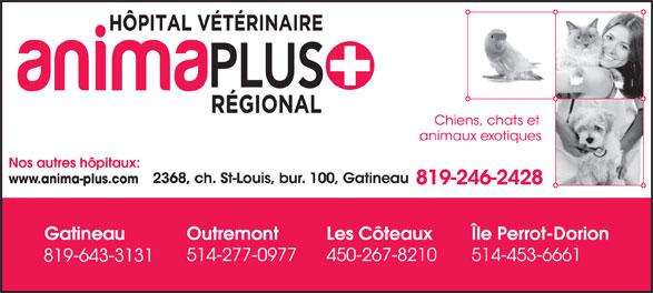 Anima-Plus Hôpitaux Vétérinaires (819-246-2428) - Annonce illustrée======= -