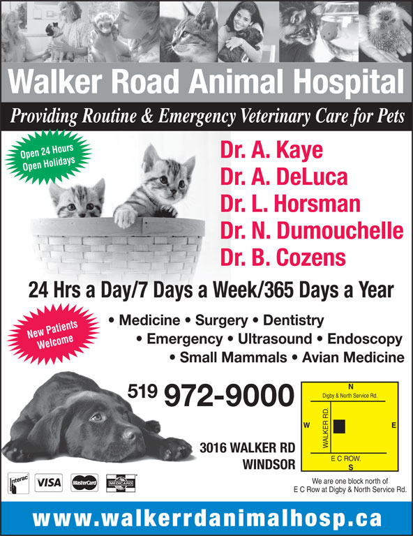 Walker Road Animal Hospital (519-972-9000) - Display Ad - Providing Routine & Emergency Veterinary Care for Pets Dr. A. Kaye Open 24 Hours Open Holidays New Patients Dr. A. DeLuca Dr. L. Horsman Dr. N. Dumouchelle Dr. B. Cozens 24 Hrs a Day/7 Days a Week/365 Days a Year Medicine   Surgery   Dentistry Emergency   Ultrasound   Endoscopy Welcome Small Mammals   Avian Medicine Digby & North Service Rd. 519 972-9000 E W ALKER R 3016 WALKER RD E C ROW. WINDSOR We are one block north of E C Row at Digby & North Service Rd. www.walkerrdanimalhosp.ca Walker Road Animal Hospital