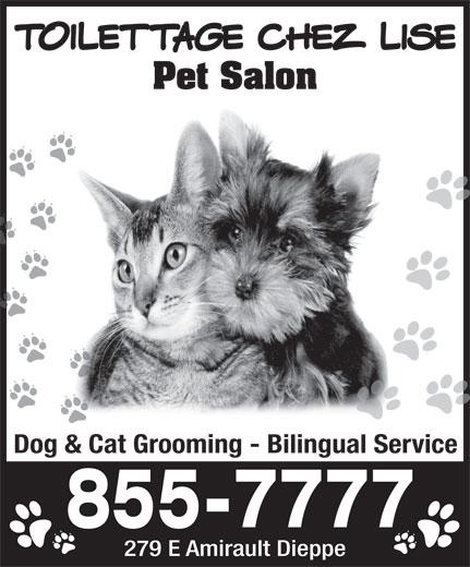 Toilettage Chez Lise Pet Salon (506-855-7777) - Annonce illustrée======= - Toilettage Chez Lise Pet Salon Dog & Cat Grooming - Bilingual Service 279 E Amirault Dieppe