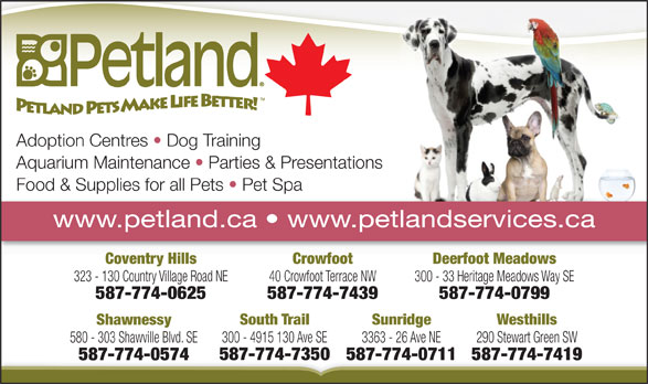 Petland (403-259-5579) - Annonce illustrée======= - South Trail Sunridge Westhills Shawnessy 300 - 4915 130 Ave SE 3363 - 26 Ave NE 290 Stewart Green SW 580 - 303 Shawville Blvd. SE 587-774-7350587-774-0711587-774-7419 587-774-0574 Adoption Centres   Dog Training Aquarium Maintenance   Parties & Presentations Food & Supplies for all Pets   Pet Spa www.petland.ca   www.petlandservices.ca Deerfoot MeadowsCrowfootCoventry Hills 300 - 33 Heritage Meadows Way SE40 Crowfoot Terrace NW323 - 130 Country Village Road NE 587-774-0799587-774-7439587-774-0625