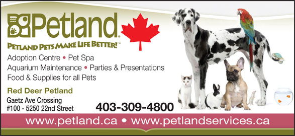 Petland (403-309-4800) - Annonce illustrée======= - Adoption Centre   Pet Spa Aquarium Maintenance   Parties & Presentations Food & Supplies for all Pets Red Deer Petland Gaetz Ave Crossing #100 - 5250 22nd Street 403-309-4800 www.petland.ca   www.petlandservices.cawww.petland.ca  www.petlandservices.ca