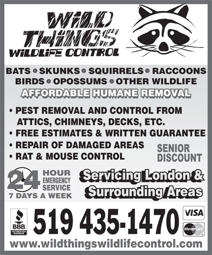 Wild Things Wildlife Control Inc. (519-435-1470) - Display Ad - BATS   SKUNKS   SQUIRRELS   RACCOONS BIRDS   OPOSSUMS   OTHER WILDLIFE AFFORDABLE HUMANE REMOVAL PEST REMOVAL AND CONTROL FROM ATTICS, CHIMNEYS, DECKS, ETC. FREE ESTIMATES & WRITTEN GUARANTEE REPAIR OF DAMAGED AREAS RAT & MOUSE CONTROL Servicing London & Servicing London & Surrounding Areas Surrounding Areas 519 435-1470 www.wildthingswildlifecontrol.com