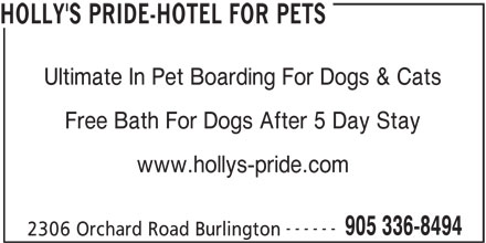 Holly's Pride-Hotel For Pets (905-336-8494) - Display Ad - HOLLY'S PRIDE-HOTEL FOR PETS Ultimate In Pet Boarding For Dogs & Cats Free Bath For Dogs After 5 Day Stay www.hollys-pride.com ------ 905 336-8494 2306 Orchard Road Burlington Free Bath For Dogs After 5 Day Stay www.hollys-pride.com ------ 905 336-8494 2306 Orchard Road Burlington HOLLY'S PRIDE-HOTEL FOR PETS Ultimate In Pet Boarding For Dogs & Cats