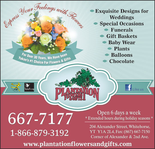 Plantation Flowers & Gifts (867-667-7177) - Display Ad - Open 6 days a week * Extended hours during holiday seasons * 667-7177 204 Alexander Street, Whitehorse, Express Your Feelings with Flowers Funerals Gift Baskets Baby Wear Plants For Over 30 Years, We Have been Yukon s #1 Choice For Flowers & Gifts For Ovbeen For Over30 Ye Y Balloons Yars,We Havebeen Yukon n s s# Gifts #1 1 C &G Ch s& rs hoi Exquisite Designs for Weddings Special Occasions Chocolate er ice For Fl lowe YT  Y1A 2L4, Fax: (867) 667-7150 1-866-879-3192 Corner of Alexander & 2nd Ave. www.plantationflowersandgifts.com