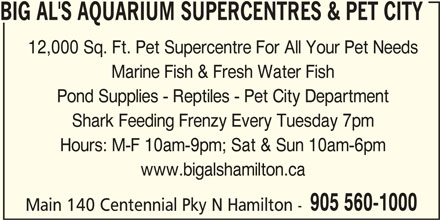 Big Al's (905-560-1000) - Display Ad - BIG AL'S AQUARIUM SUPERCENTRES & PET CITY 12,000 Sq. Ft. Pet Supercentre For All Your Pet Needs Marine Fish & Fresh Water Fish Pond Supplies - Reptiles - Pet City Department Shark Feeding Frenzy Every Tuesday 7pm Hours: M-F 10am-9pm; Sat & Sun 10am-6pm www.bigalshamilton.ca 905 560-1000 Main 140 Centennial Pky N Hamilton - BIG AL'S AQUARIUM SUPERCENTRES & PET CITY 12,000 Sq. Ft. Pet Supercentre For All Your Pet Needs Marine Fish & Fresh Water Fish Pond Supplies - Reptiles - Pet City Department Shark Feeding Frenzy Every Tuesday 7pm Hours: M-F 10am-9pm; Sat & Sun 10am-6pm www.bigalshamilton.ca 905 560-1000 Main 140 Centennial Pky N Hamilton -