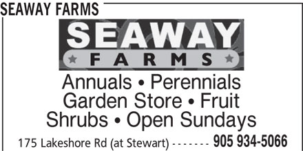 Seaway Farms (905-934-5066) - Display Ad - SEAWAY FARMS Annuals  Perennials Garden Store  Fruit Shrubs  Open Sundays 905 934-5066 175 Lakeshore Rd (at Stewart) -------
