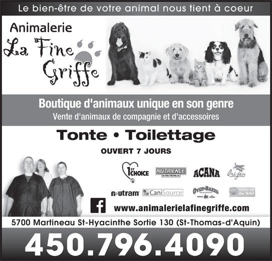 Animalerie La Fine Griffe (450-796-4090) - Annonce illustrée======= - Le bien-être de votre animal nous tient à coeur Boutique d'animaux unique en son genre Vente d'animaux de compagnie et d'accessoires Tonte   Toilettage OUVERT 7 JOURS www.animalerielafinegriffe.co 5700 Martineau St-Hyacinthe Sortie 130 (St-Thomas-d'Aquin) 450.796.4090