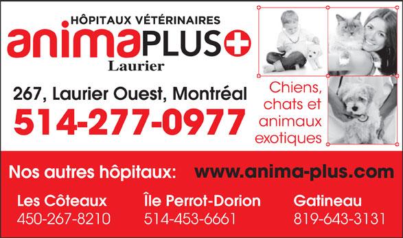 Groupe Vétérinaire Animaplus Inc. (514-277-0977) - Annonce illustrée======= - 267, Laurier Ouest, Montréal GatineauLes Côteaux Île Perrot-Dorion 450-267-8210 514-453-6661 819-643-3131 514-277-0977 Laurier