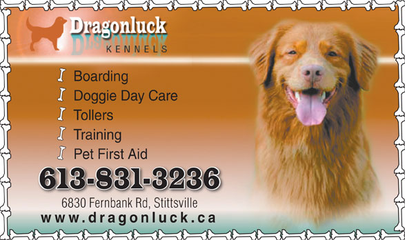 Dragonluck Kennels (613-831-3236) - Display Ad - Training Pet First Aid 6830 Fernbank Rd, Stittsville www.dragonluck.ca Boarding Doggie Day Care Tollers