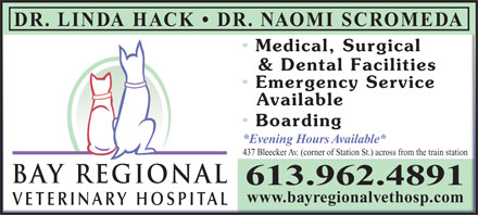 Bay Regional Veterinary Hospital (613-962-4891) - Display Ad