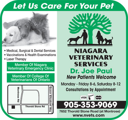 Niagara Veterinary Services (905-353-9069) - Display Ad - 7652 Thorold Stone Road (at Montrose) www.nvets.com Let Us Care For Your Pet Medical, Surgical & Dental Services Vaccinations & Health Examinations Laser Therapy Member Of Niagara Veterinary Emergency Clinic Dr. Joe Paul Member Of College Of New Patients Welcome Veterinarians Of Ontario Monday - Friday 8-6, Saturday 8-12 Queen Elizabeth Way Thorold Stone Rd Montrose Rd Consultations by Appointment 905-353-9069 7652 Thorold Stone Road (at Montrose) www.nvets.com Let Us Care For Your Pet Medical, Surgical & Dental Services Vaccinations & Health Examinations Laser Therapy Member Of Niagara Veterinary Emergency Clinic Dr. Joe Paul Member Of College Of New Patients Welcome Veterinarians Of Ontario Monday - Friday 8-6, Saturday 8-12 Queen Elizabeth Way Thorold Stone Rd Montrose Rd Consultations by Appointment 905-353-9069