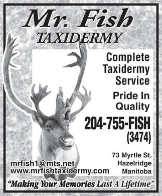 Mr Fish Taxidermy (204-755-3474) - Annonce illustr&eacute;e - Mr. Fish TAXIDERMYTAXIDERM Complete Taxidermy Service Pride In Quality 204-755-FISH204 (3474) 73 Myrtle St. Hazelridge mrfish1@mts.net www.mrfishtaxidermy.com Manitoba  Mr. Fish TAXIDERMYTAXIDERM Complete Taxidermy Service Pride In Quality 204-755-FISH204 (3474) 73 Myrtle St. Hazelridge mrfish1@mts.net www.mrfishtaxidermy.com Manitoba