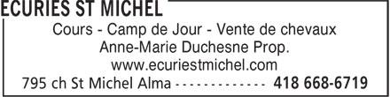 Ecuries St Michel (418-487-7703) - Annonce illustrée======= - Cours - Camp de Jour - Vente de chevaux - Anne-Marie Duchesne Prop. - www.ecuriestmichel.com