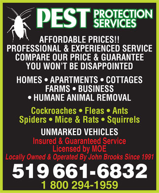 AAA Pest Protection Services (519-661-6832) - Display Ad