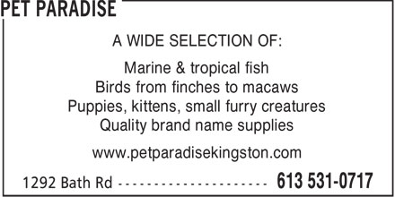 Pet Paradise (613-531-0717) - Display Ad - A WIDE SELECTION OF: Marine & tropical fish Birds from finches to macaws Puppies, kittens, small furry creatures Quality brand name supplies www.petparadisekingston.com  A WIDE SELECTION OF: Marine & tropical fish Birds from finches to macaws Puppies, kittens, small furry creatures Quality brand name supplies www.petparadisekingston.com