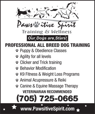 Pawsitive Spirit (705-725-0665) - Display Ad - Our Dogs are Stars! PROFESSIONAL ALL BREED DOG TRAINING Puppy & Obedience Classes Agility for all levels Clicker and Trick training Behavior Modification K9 Fitness & Weight Loss Programs Animal Acupressure & Reiki Canine & Equine Massage Therapy VETERINARIAN RECOMMENDED ( ) ( ) 705 725-0665 www.PawsitiveSpirit.com