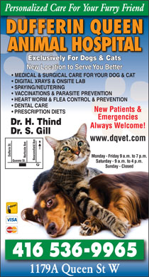 Dufferin Queen Animal Hospital (416-536-9965) - Display Ad - Personalized Care For Your Furry Friend DUFFERIN QUEEN ANIMAL HOSPITAL Exclusively For Dogs &amp; CatselyForDogs&amp;CatExclusivs New Location to Serve You Better MEDICAL &amp; SURGICAL CARE FOR YOUR DOG &amp; CAT DIGITAL XRAYS &amp; ONSITE LAB SPAYING/NEUTERING VACCINATIONS &amp; PARASITE PREVENTION HEART WORM &amp; FLEA CONTROL &amp; PREVENTION DENTAL CARE New Patients &amp; PRESCRIPTION DIETS Emergencies Dr. H. Thind Always Welcome! Dr. S. Gill www.dqvet.com Dufferin St. Monday - Friday 9 a.m. to 7 p.m. Norhcote Ave Beaconsfield Ave Queens St. Saturday - 9 a.m. to 4 p.m. Sunday - Closed 416 5369965 1179A Queen St W