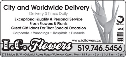 I C Flowers (519-746-5456) - Display Ad