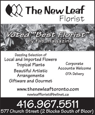 The New Leaf Florist (416-967-5511) - Annonce illustrée - Voted  Best Florist d Best Floris by fab magazine Dazzling Selection of Local and Imported Flowers Corporate Tropical Plants Accounts Welcome Beautiful Artistic GTA Delivery Arrangements Giftware and Gourmet www.thenewleaftoronto.com newleafflorist@bellnet.ca 416.967.5511 577 Church Street (2 Blocks South of Bloor)