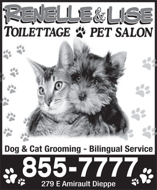 Renelle & Lise Dog & Cat Grooming (506-855-7777) - Annonce illustrée - Dog & Cat Grooming - Bilingual Service 279 E Amirault Dieppe