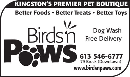 Birds N Paws (613-546-6777) - Display Ad - KINGSTON S PREMIER PET BOUTIQUE Better Foods   Better Treats   Better Toys Dog Wash Free Delivery Birds n 613 546-6777 79 Brock (Downtown) www.birdsnpaws.com