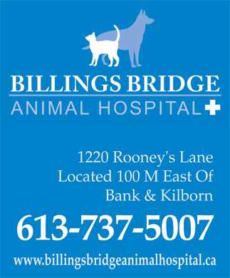 Billings Bridge Animal Hospital (613-737-5007) - Annonce illustrée - 1220 Rooney's Lane Located 100 M East Of Bank & Kilborn 613-737-5007 www.billingsbridgeanimalhospital.ca