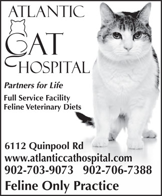 Atlantic Cat Hospital (902-423-7877) - Display Ad - Partners for Life Full Service Facility Feline Veterinary Diets 6112 Quinpool Rd www.atlanticcathospital.com 902-703-9073   902-706-7388 Feline Only Practice